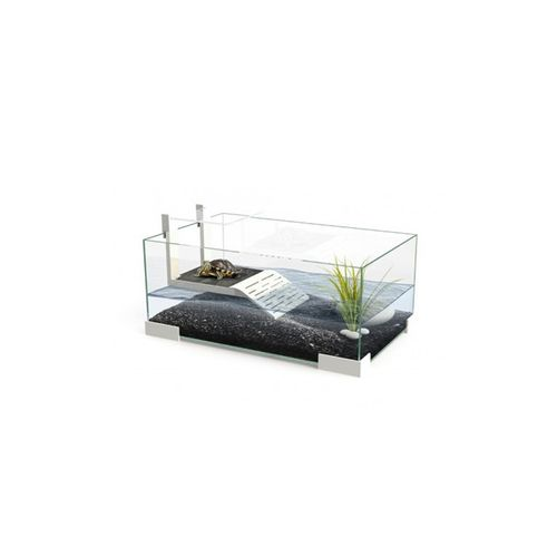 Ciano-Tartarugueira-40-cm