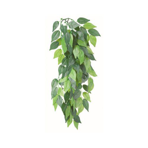 Trixie-Planta-para-Terrario