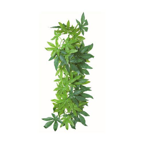 Trixie-Planta-para-Terrario---Abutilon