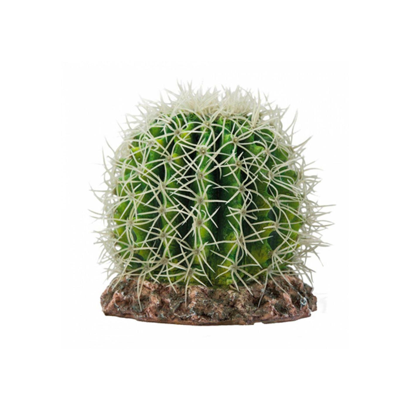 Trixie-Kaktus-Sonora