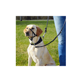 Trixie-Top-Trainer-Training-Harness