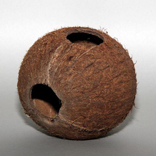 JBL-Cocos-Cava-1-1M