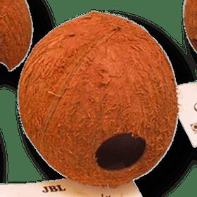 JBL-Cocos-Cava-3-4L