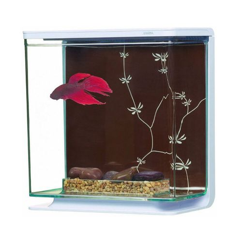 MARINA-Aquario-Kit-p--Betta-Contemporary-3L