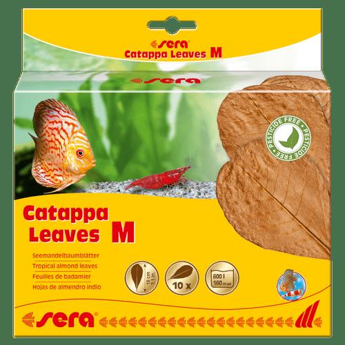 SERA-folhas-de-Catappa-M