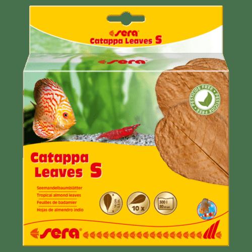 SERA-folhas-de-Catappa-S