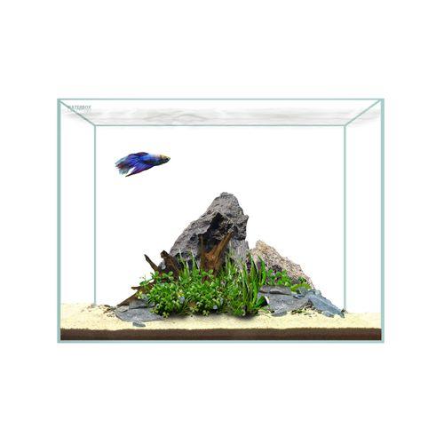 WaterBox-Clear-Mini-6