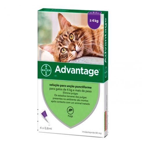Advantage-80-gato