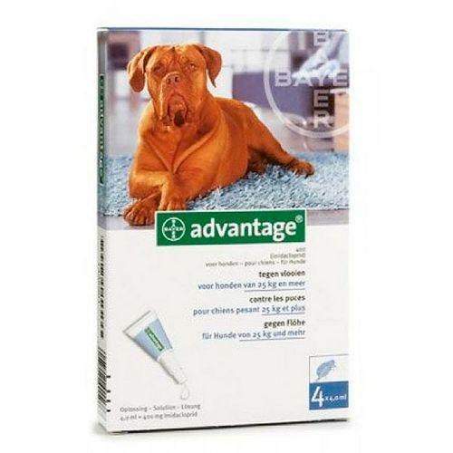 Advantage-400-cao