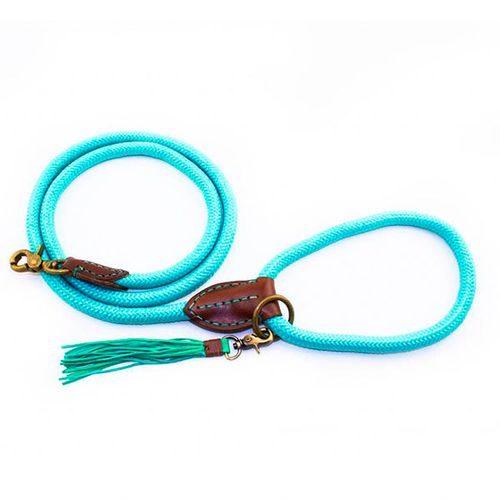 Trela-Leash-DWAM-turquoise