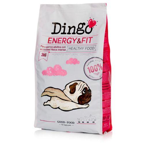 Dingo-Energy---Fit