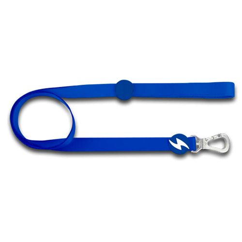 Dashi-Solid-Blue-Leash