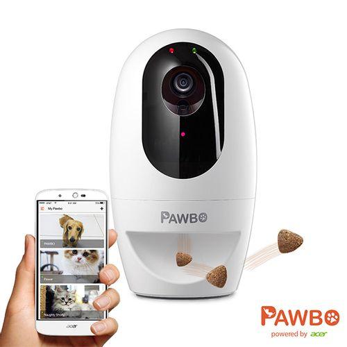 Pawbo--Camara-Interactiva-para-Caes-e-Gatos