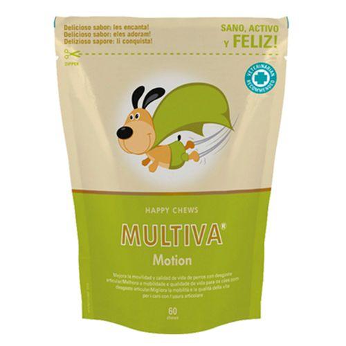 Multiva-Motion