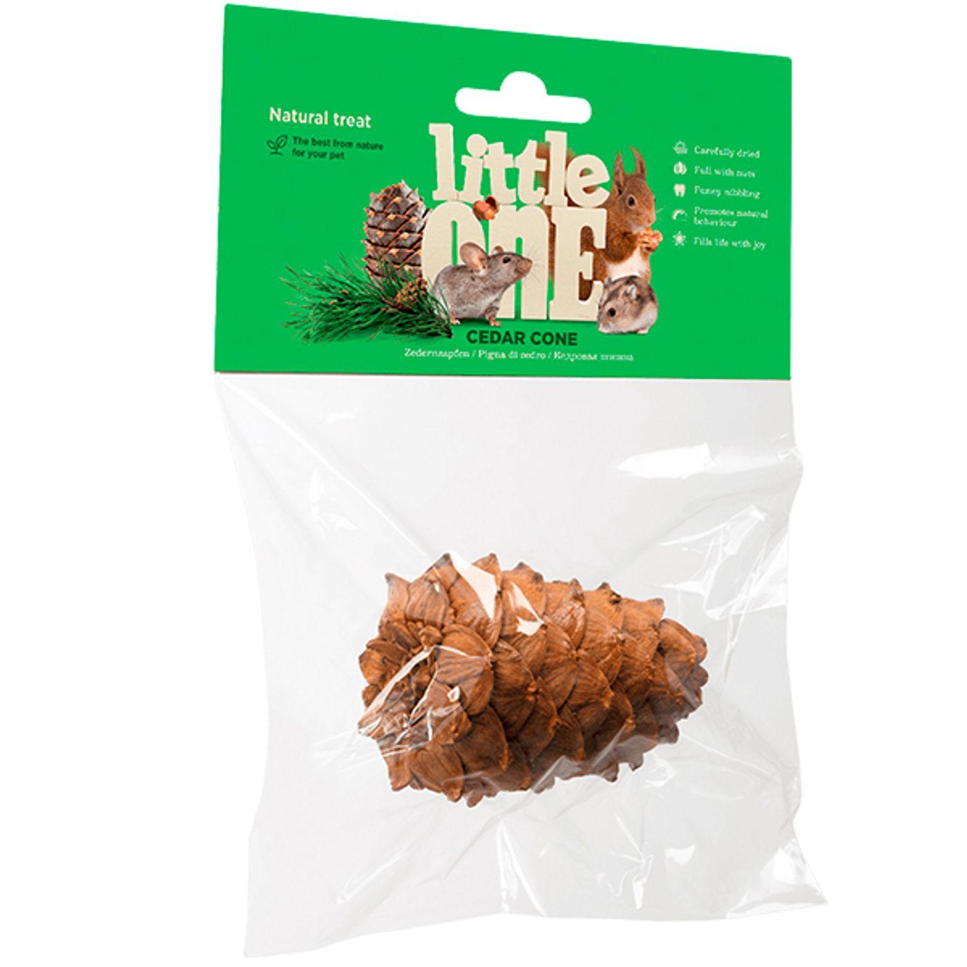 Little-One-Cone-de-Cedro