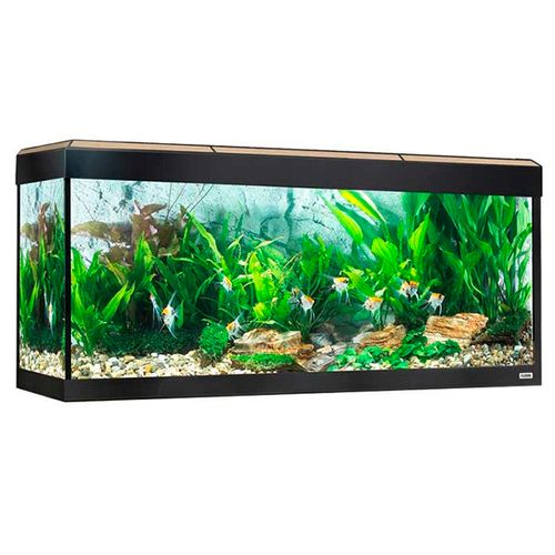 Fluval-Roma-Aquario-LED-Bluetooth-240L-Carvalho