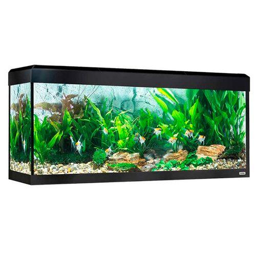Fluval-Roma-Aquario-LED-Bluetooth-240L-Preto