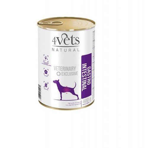 4vets-dieta-veterinaria-gastro-intestinal-