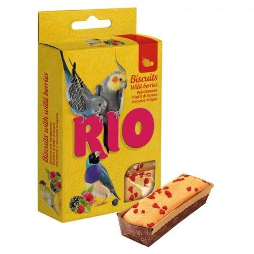 rio-biscoitos-com-frutos-silvestres-para-aves