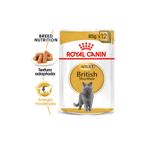 Royal_Canin_British_Shorthair_Adult_Wet_Saqueta