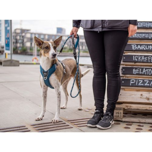 comfort-walk-pro-harness--7-